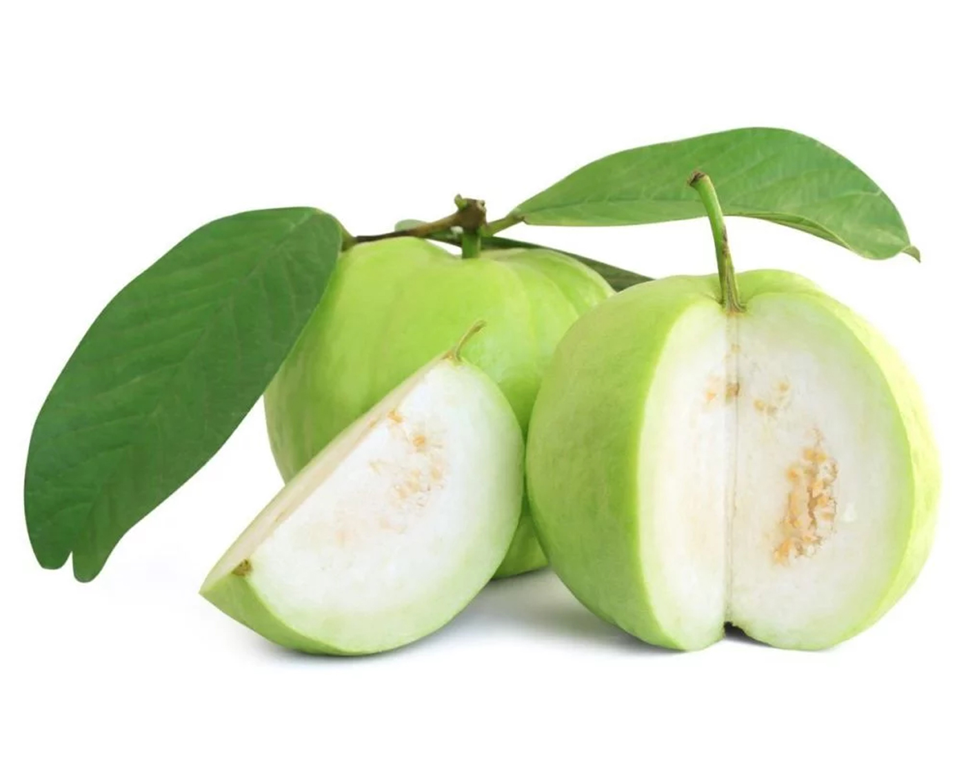 guava-fruits-to-strengthen-resistance-against-coronavirus
